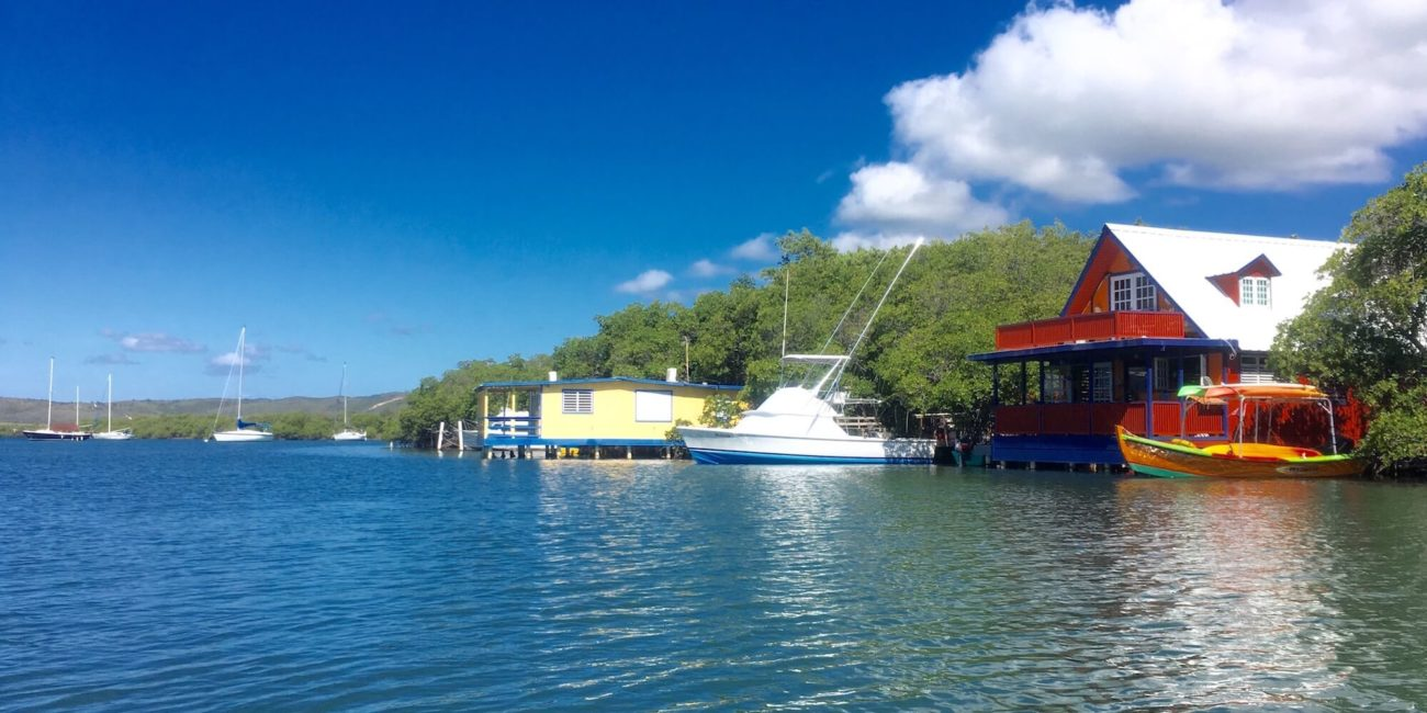 view from puerto rico island charters