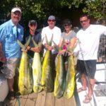 pargueras fishing charters mahi mahi