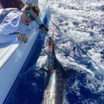 fishing charters puerto rico